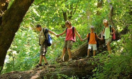 4 bước nuôi dưỡng tình yêu thiên nhiên cho trẻ em