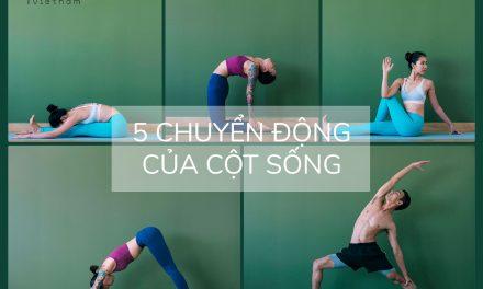 Tìm hiểu 5 chuyển động của cột sống trong yoga