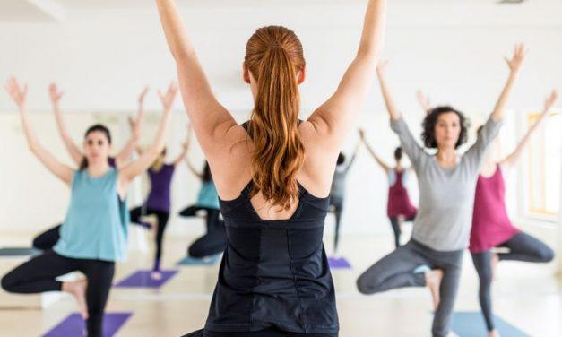 Tìm hiểu 11 trường phái yoga chính