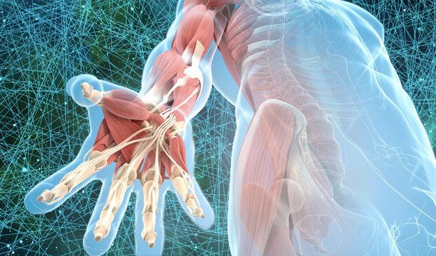Mạc cơ giúp ta tháo gỡ những căng thẳng ẩn sâu trong cơ thể